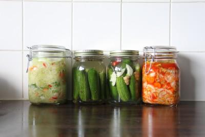 Wateetons Wetenschap: meest wetenschappelijk onderbouwde stuk over gezondheidseffecten van gefermenteerd voedsel dat ik ken