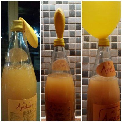 Cider maken met meneer Wateetons – altijd een half erect feestje