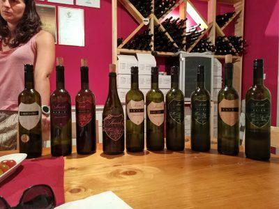 Wijn proeven in de Vipava vallei in Slovenië deel 2: Jamšek